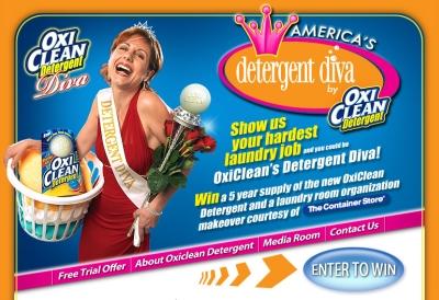 America's Detergent Diva