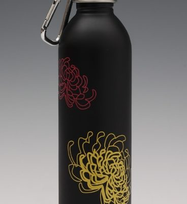 Stainless Steel Water Bottles from EarthLust