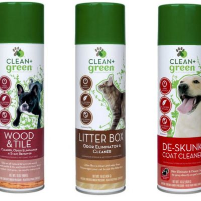 Clean + Green Product Giveaway