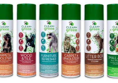 Clean+Green Review & 50% OFF Coupon Code for The Fashionable Housewife Readers!