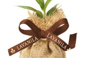 Lavanila Celebrates Earth MONTH