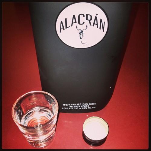 Alacran Tequila shots