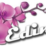 edimi logo