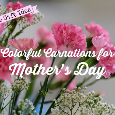 Mother's Day Gift Idea: Choosing Colorful Carnations for Mom