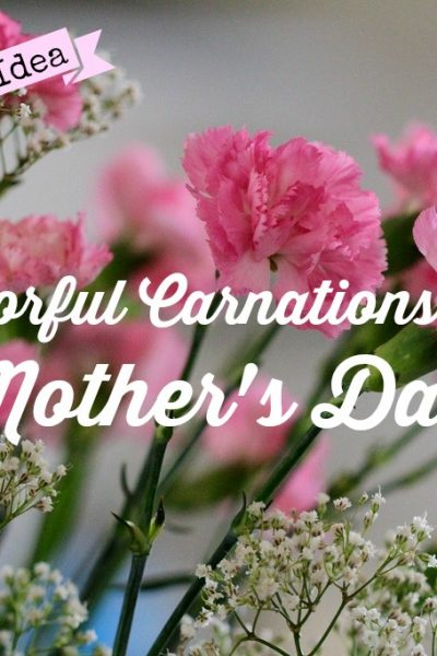 Colorful Carnations for Your Mom