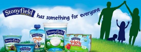 stonyfield yogurt products
