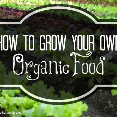 How To Grow Your Own Organic Food