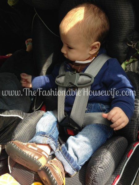Frugal Facts for Ensuring Child Safety in Your Family Car