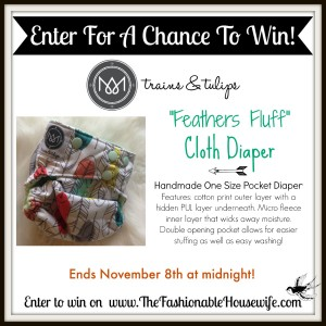 Enter For A Chance To Win Trains and Tulips Cloth Diaper