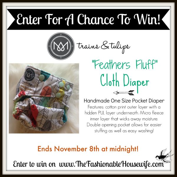 Enter The Trains & Tulips Cloth Diaper Giveaway