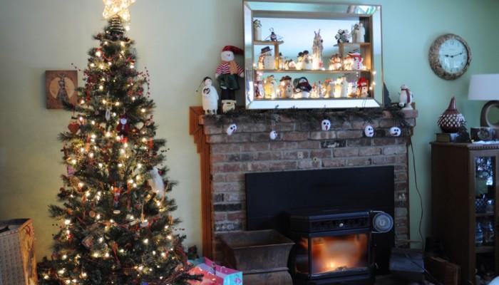 ballard family christmas 2012