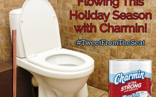 Keep Things Flowing This Holiday Season with Charmin  #TweetFromTheSeat
