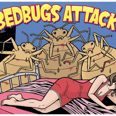 Apartment Living: Strategies for Blocking Out Bed Bugs