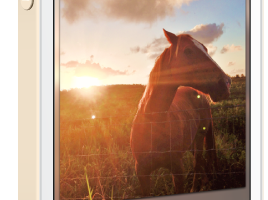 "Make Your ""Selfies"" Shine with PicTapGo! App for iPhone"