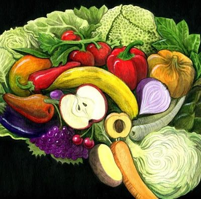 Brain Food –Studies Reveal the Importance of Food on Cognitive Health