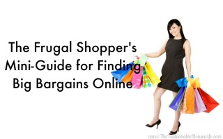 The Frugal Shopper's Mini-Guide for Finding Big Bargains Online