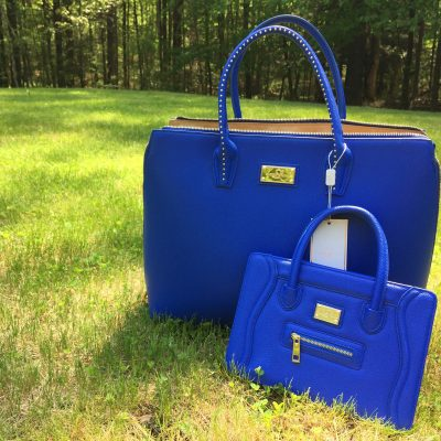 Sandy Lisa Fashionable & Functional Handbags