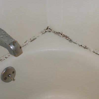 Keeping Mold Out of Your Bathroom