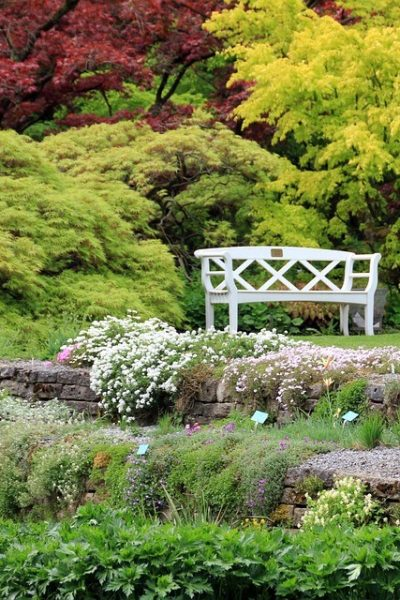 How To Have A Beautiful Yard, Regardless of Size