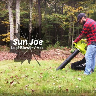 Fall Must-Have: Portable Leaf Blower Shredder/Vac