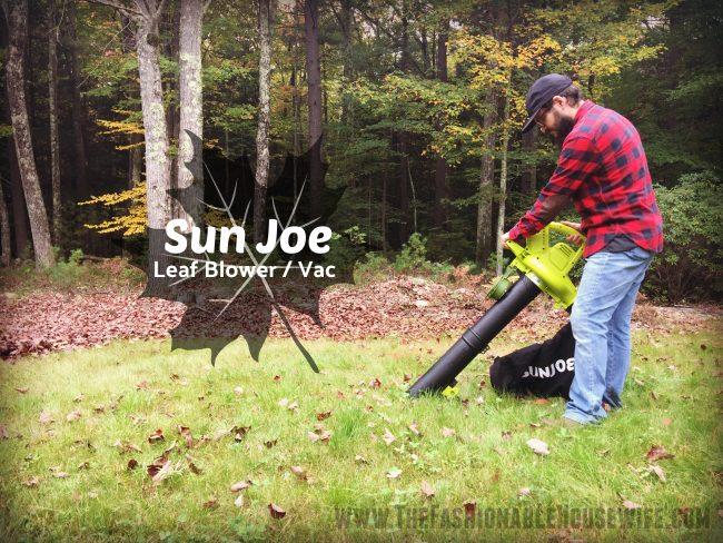 Fall Must-Have: Portable Leaf Blower Shredder/Vac