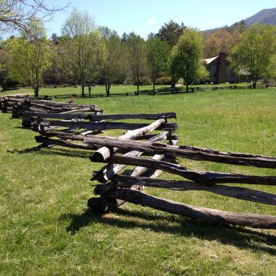 Homesteading: DIY Jobs To Tackle Right Now!