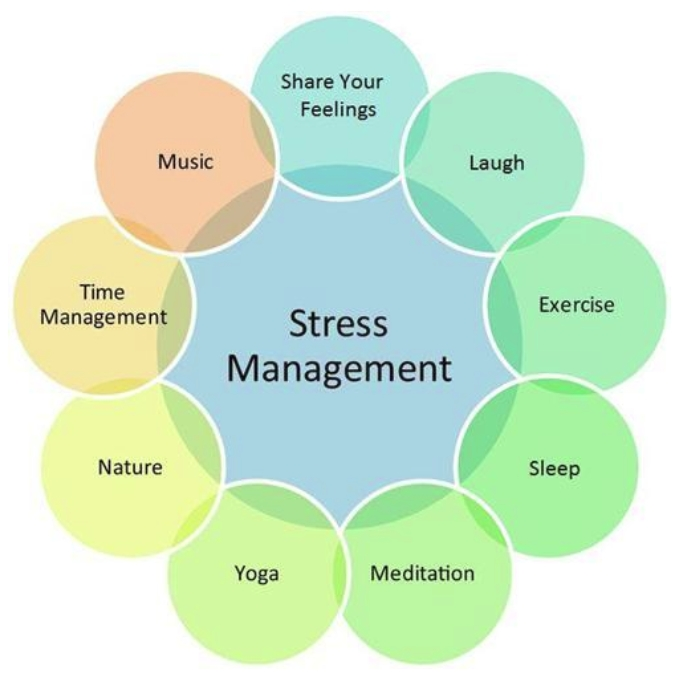 stress management in our everyday life The american hearn association helps you learn how physical activity improves the quality of life try our top 10 tips to get more stress management.