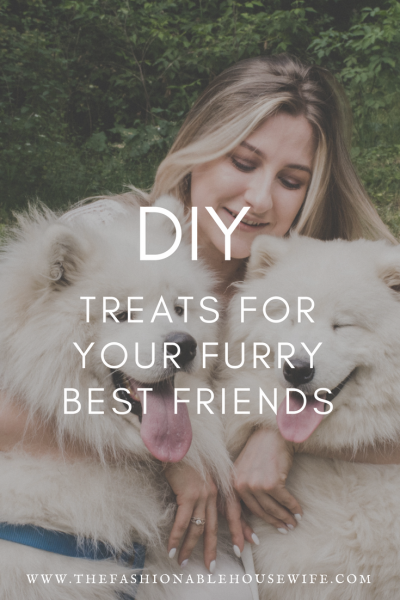 DIY Treats For Your Furry Best Friends