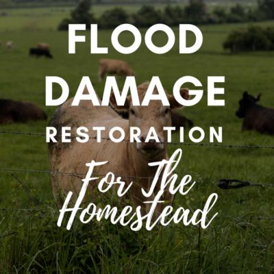 Flood Damage Restoration For The Homestead