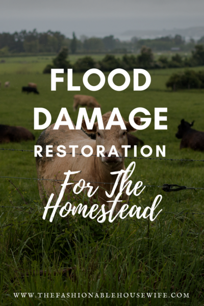 Flood Damage Restoration For The Homestead