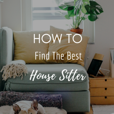 How To Find The Best House Sitter