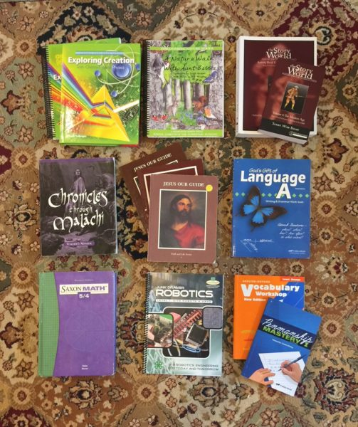 Our Homeschool Curriculum Picks For The 2018-2019 School Year