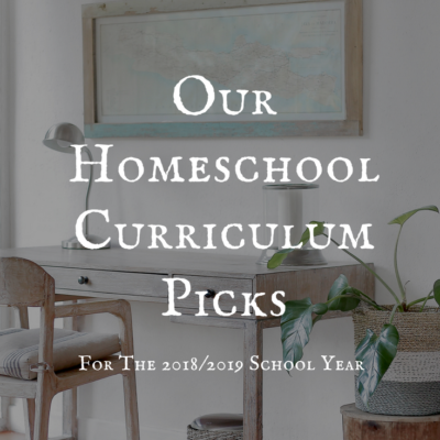 Our Homeschool Curriculum Picks for 2018/2019 School Year