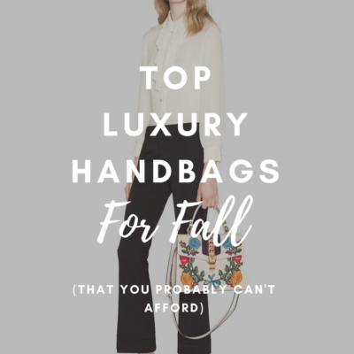 Top Luxury Handbags For Fall 2018 (That You Probably Can't Afford)