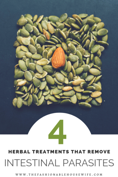 4 Herbal Treatments That Remove Intestinal Parasites