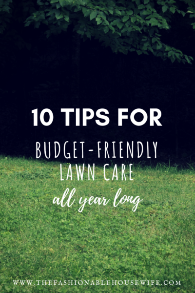 10 Tips For Budget-Friendly Lawn Care All Year Round