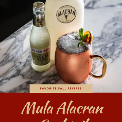 Recipe for Mula Alacran Made With Mezcal Alacran