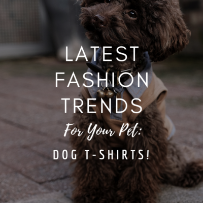 Latest Fashion Trends For Your Pet: Dog T-Shirts!