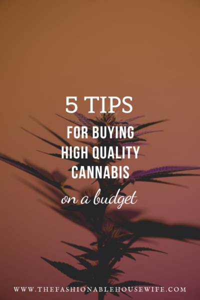 5 Tips For Buying High Quality Cannabis On A Budget