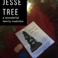 Jesse Tree: A Wonderful Family Tradition