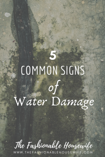 5 Common Signs Of Water Damage