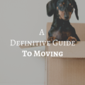A Definitive Guide To Moving