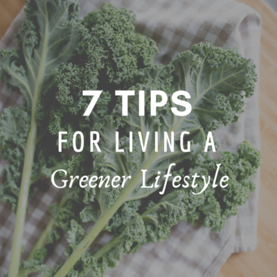 7 Tips For Living A Greener Lifestyle
