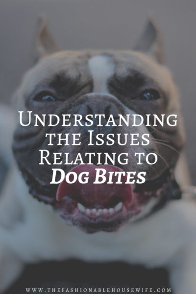 Dog Owners: Understanding The Issues Relating to Dog Bites