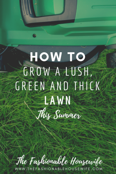 How To Grow a Lush, Green and Thick Lawn