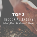 Top 3 Indoor Allergens (And How To Control Them)