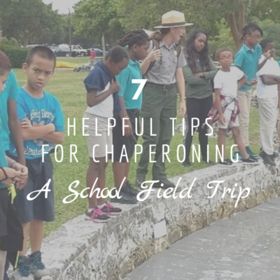 7 Helpful Tips for Chaperoning a School Field Trip