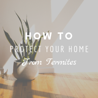 How To Protect Your Home From Termites