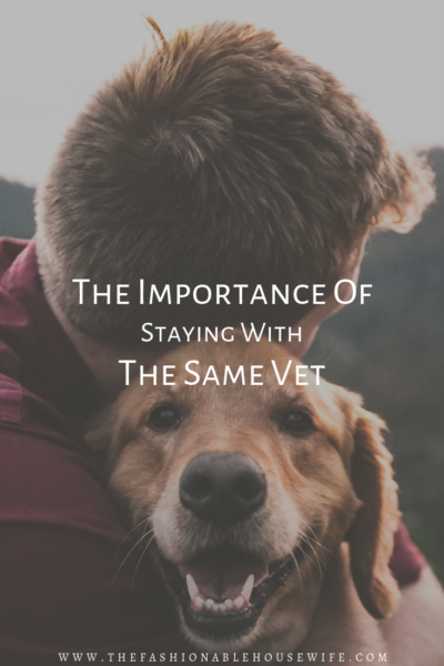 The Importance of Staying with the Same Vet