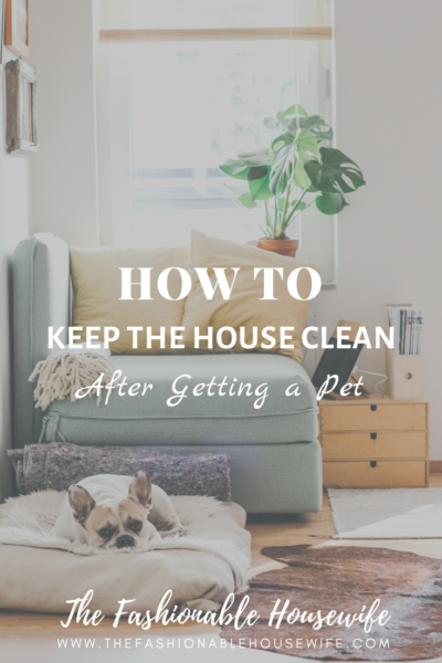 How To Keep the House Clean After Getting a Pet